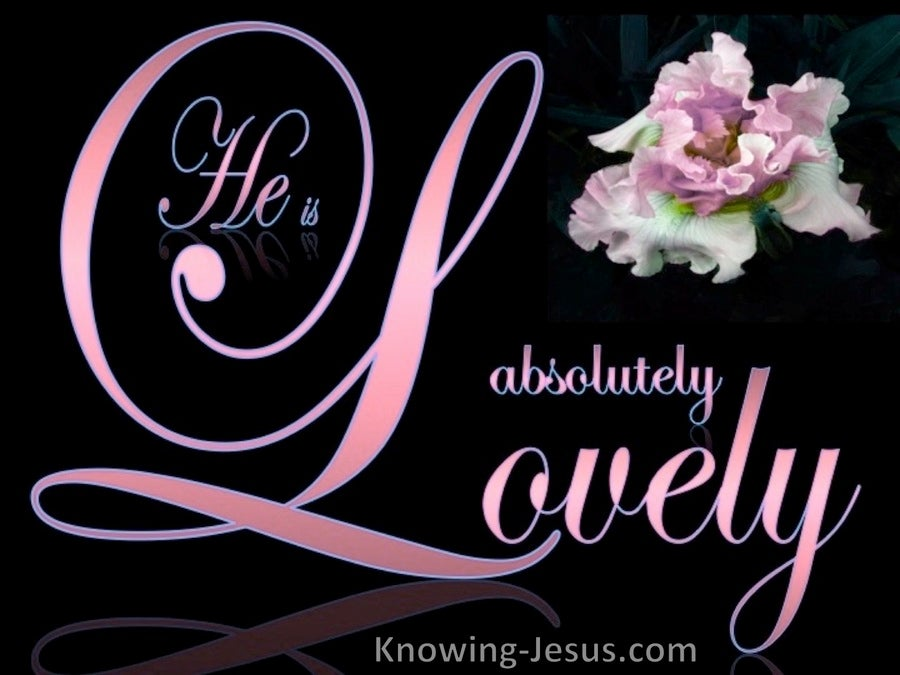 Song of Solomon 5-16 He Is Absolutely Lovely (pink)